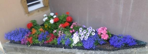 Anoux : Un village fleuri !